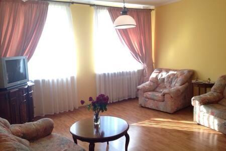 Уютная просторная квартира в центре
