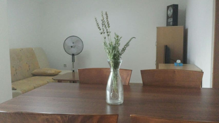Peaceful place with beautiful view - Luka - Apartamento
