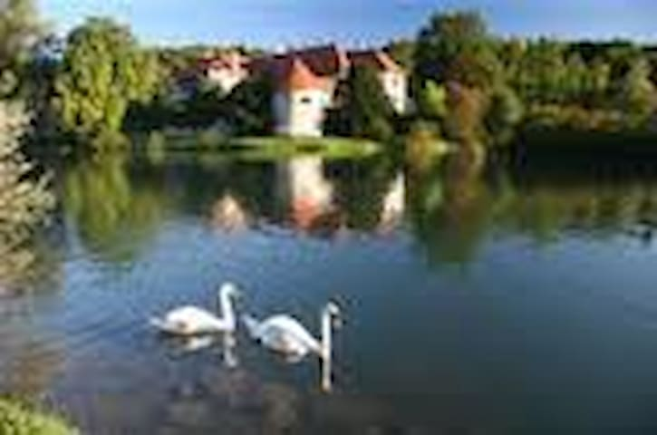 Bed & Breakfast for two - Novo mesto - Pis