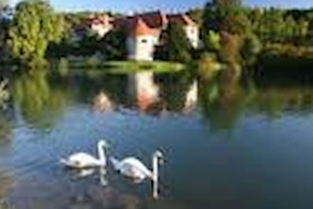 Bed & Breakfast for two - Novo mesto