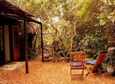 Studio apartament; king lub 2 pojedyncze łóżko, prywatny ogród
