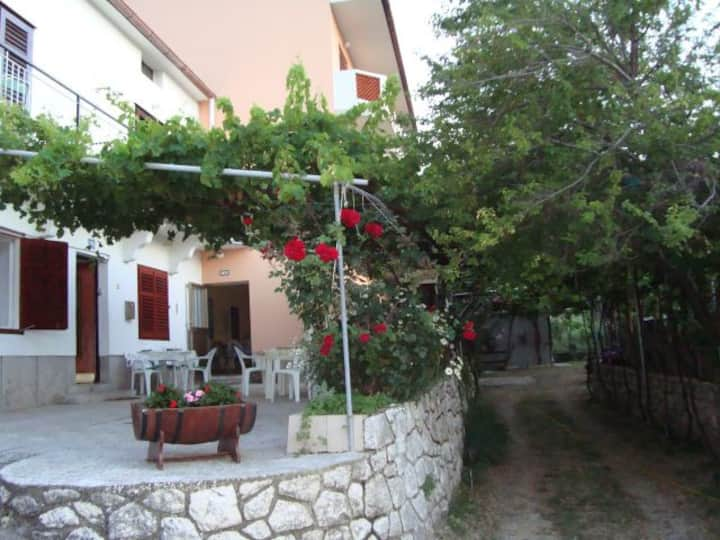 rooms near sea, great price!