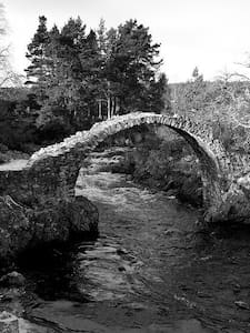 Holiday in Ancient Highland Village - Carrbridge