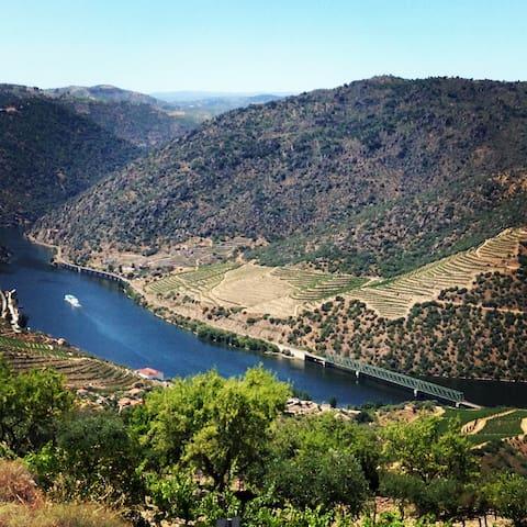 Aluga-se Casa para férias no Douro - Estrada Principal - Casa