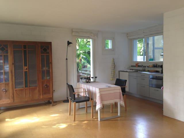 Studiowohnung mit Garten. - チューリッヒ - アパート