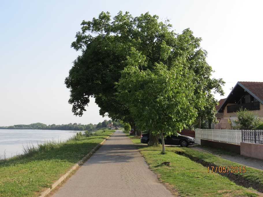 Promenade along the Danube river
