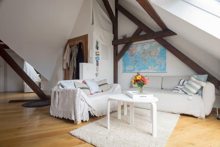 Moderne Loft - Wohnung im Paradies - Konstanz - Vindsvåning