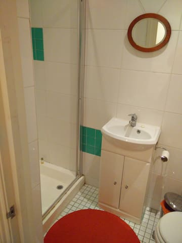 En-suite bedroom, shared house - London - House