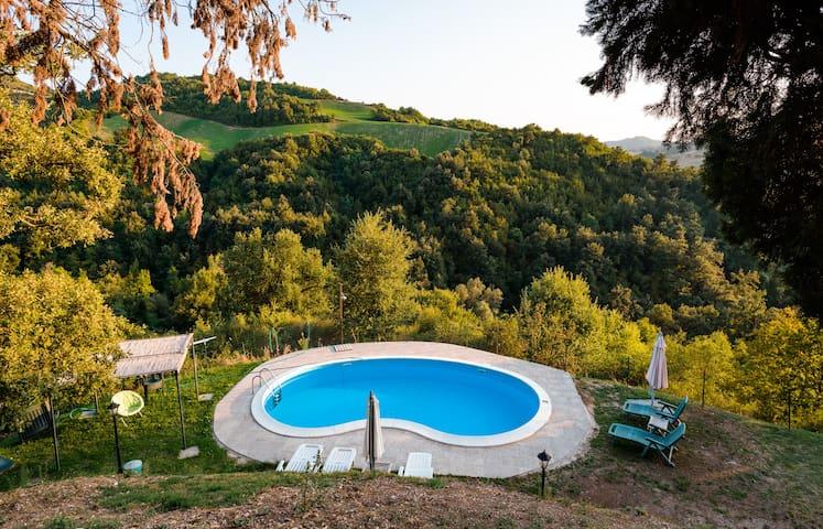La piscina immersa nel verde meraviglioso