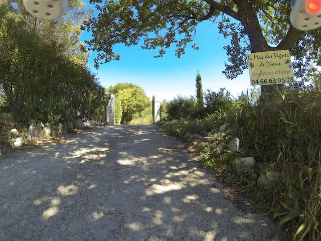 Chambre coeur de Garrigue et vignes