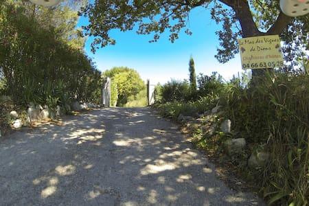 Chambre coeur de Garrigue et vignes - House