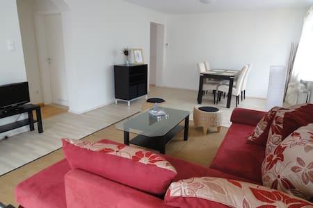 Cosy & rénové, prêt à vous recevoir - Gundershoffen - Appartement