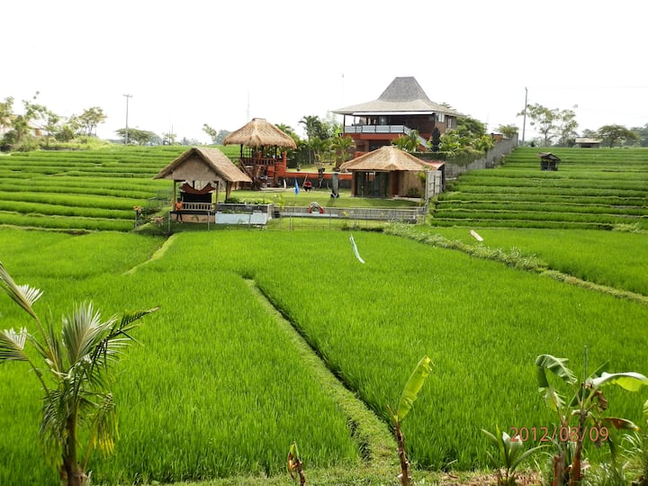 3 BR VILLA+BUNGALOW on ricefields in CANGGU BALI