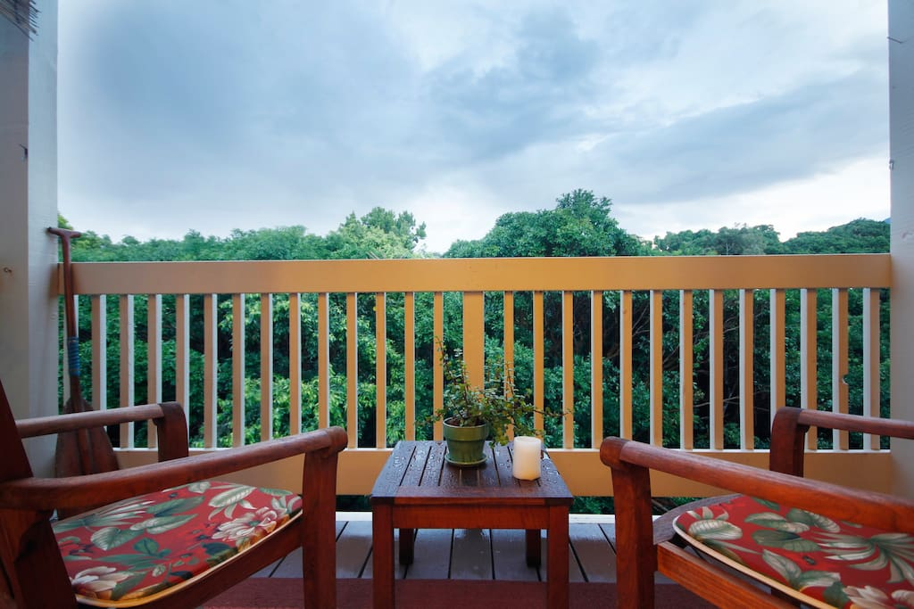Lovely Lanai with Jungle view.