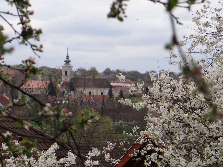 uitzicht vanaf de heuvel naar het dorp