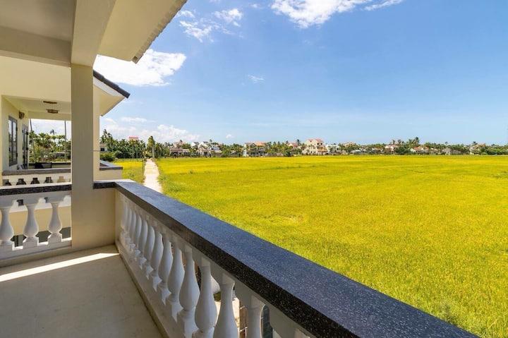 Rice Field View studio*An My*Cam Chau