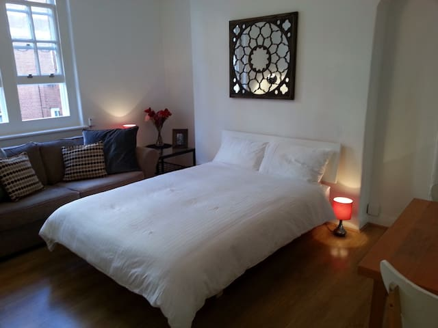 Central Flat in Westminster London