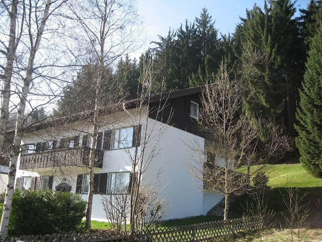 nice flat in the alps - Bad Kohlgrub - Leilighet