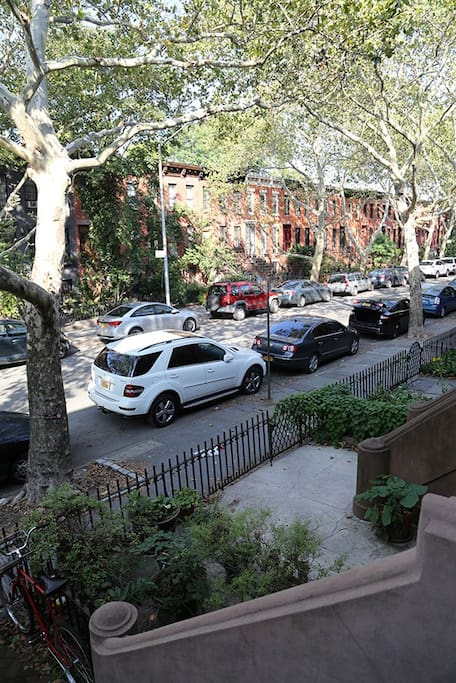 View from tour stoop, sometimes we just sit and have coffee here and say hi to our friendly neighbors-feel free to join us.