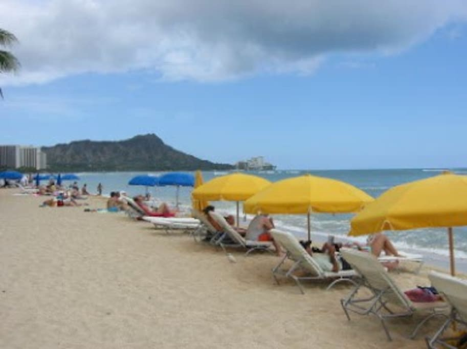 Beach Umbrellas, surfboards, chairs available