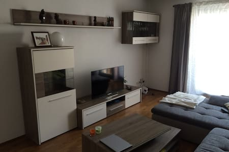 Cozy Apt available for 3 weeks
