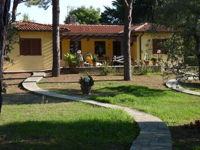 villa indipendente 2 km dal mare - Piombino - Villa