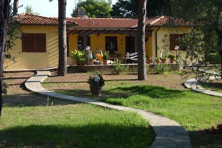 villa indipendente 2 km dal mare - Piombino