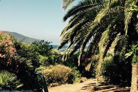 villa bord de plage - Appietto - Hus