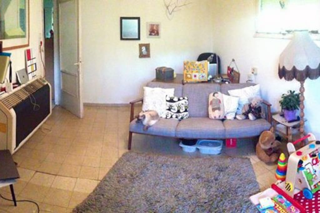 Panoramic view of the living room.