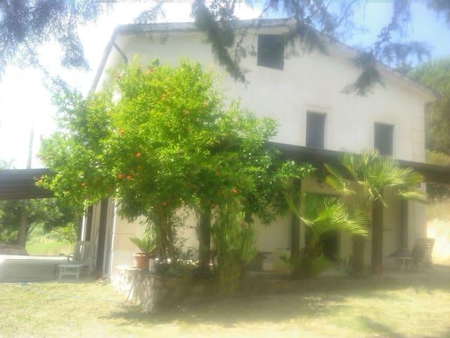 Casolare di campagna meraviglioso - Ailano - Rumah