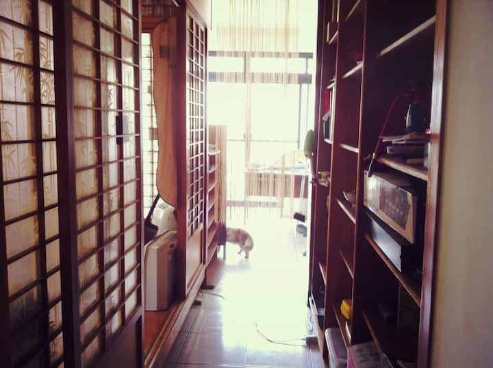 Quiet Japanese Room in Taipei City