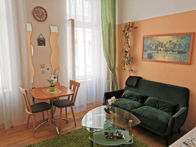 Charming Apartment near Metro & Schönbrunn Palace