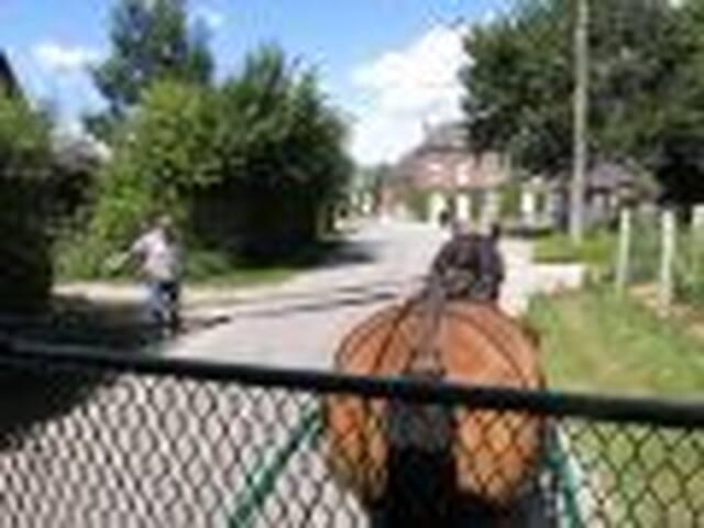 WK roulotte attelée à I.C.Art - Fontaine-en-Bray - Altres