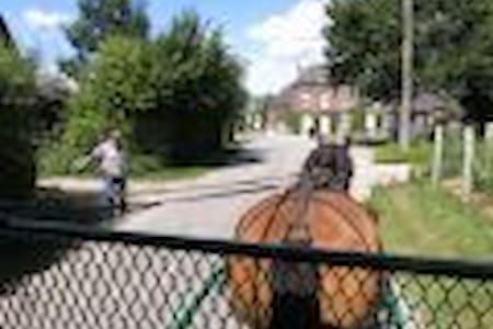 WK roulotte attelée à I.C.Art - Fontaine-en-Bray