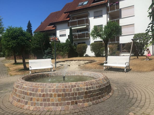 Beautiful 1 bedroom apartment - Waldshut-Tiengen - Departamento