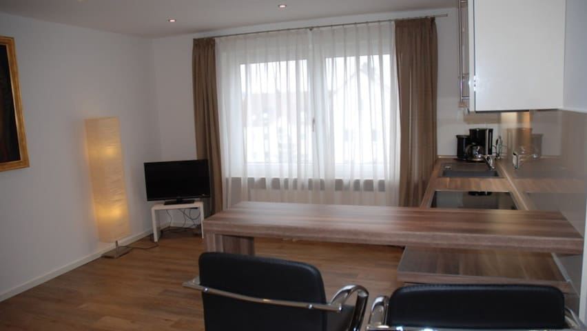 Luxuswohnung vor den Toren Münchens - Pfaffenhofen - Apartment