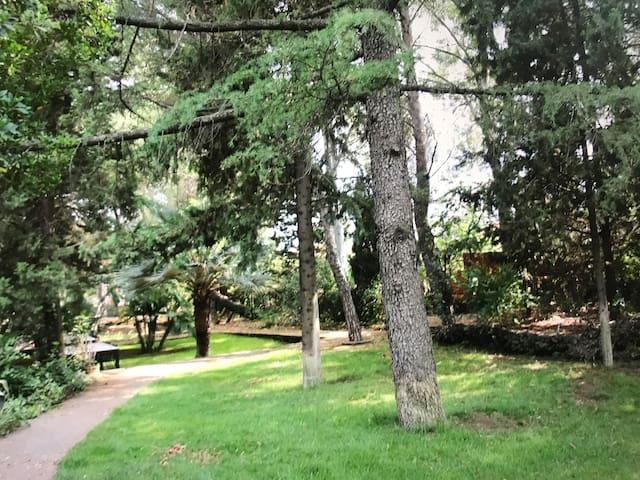 Villa Seminara parco secolare tennis spa