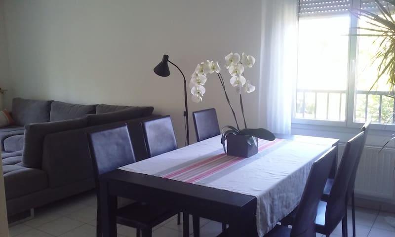 Appartement beau classique