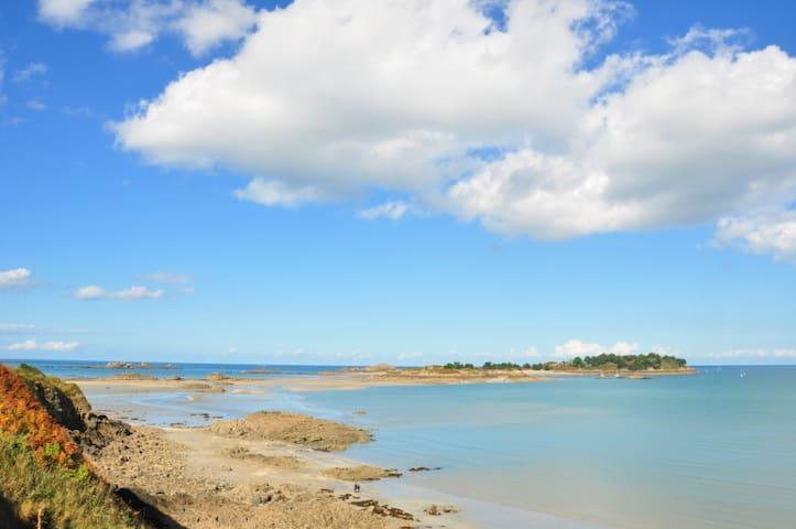 L'île des Ebihens accessible à pied à marée basse.