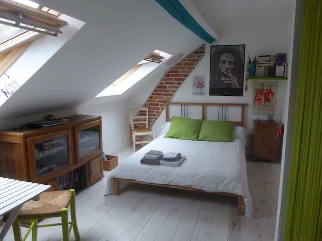 Chambre spacieuse Orleans-Sud Loire - Saint-Jean-le-Blanc - House