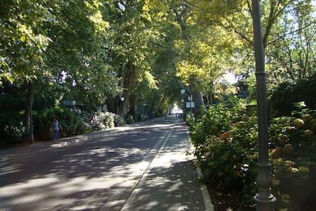 appartamento con giardino - Bolsena - Byt