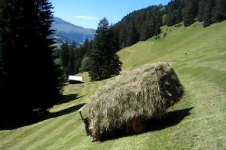 Alp Hürital - Sattel - Lomamökki
