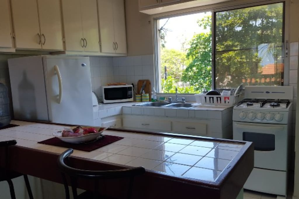 Kitchen with full size fridge, microwave, gas stove, fully equipped dishes, etc.