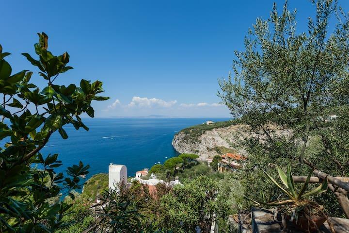La Casetta di fronte Capri - San Montano
