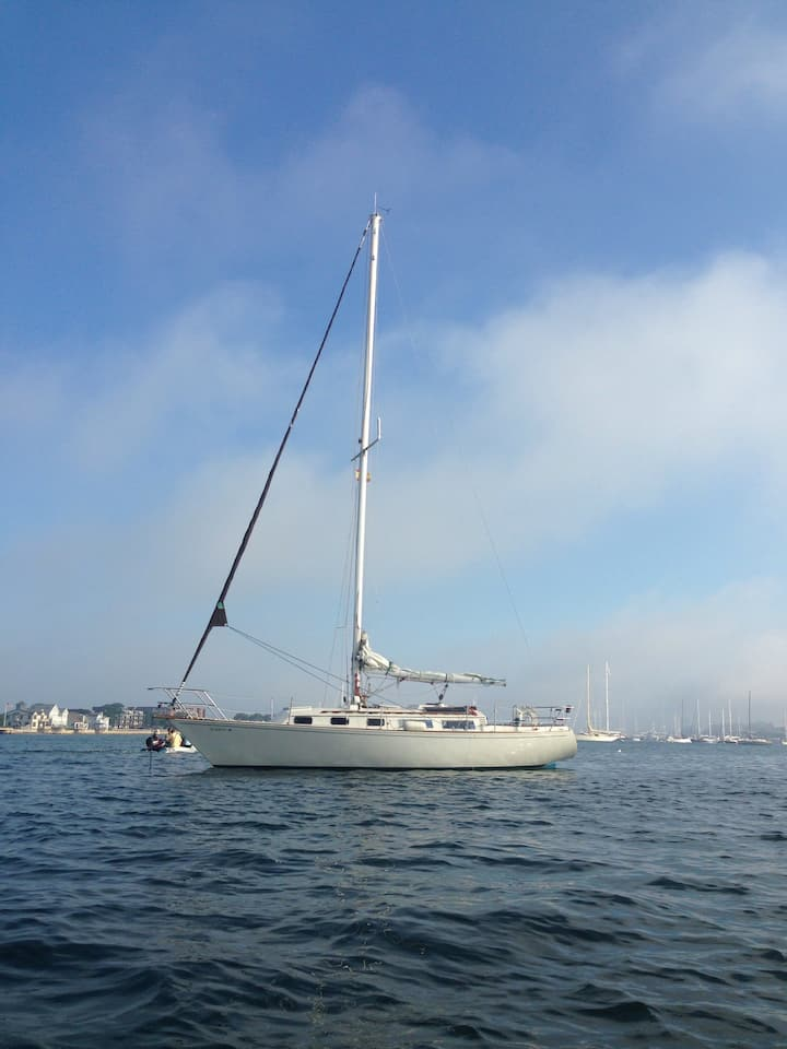 35 Foot Sailboat -In Harbor