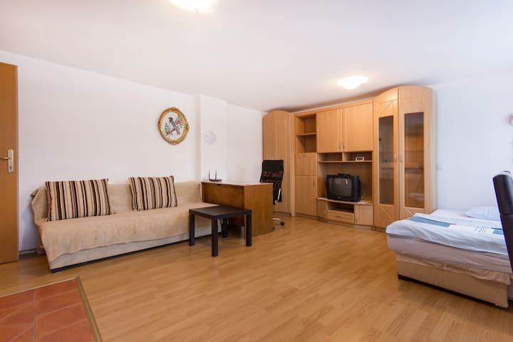 Cosy Apartment with free bikes!!