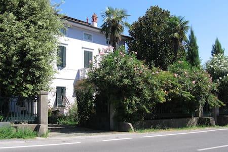 A casa di David e Miriam - Capannori