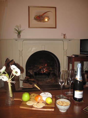 Relax in front of a cosy open log fire!