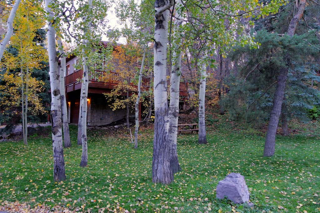 The grassy area under the aspens is a great place for the kids to play. (Picnic table not shown)