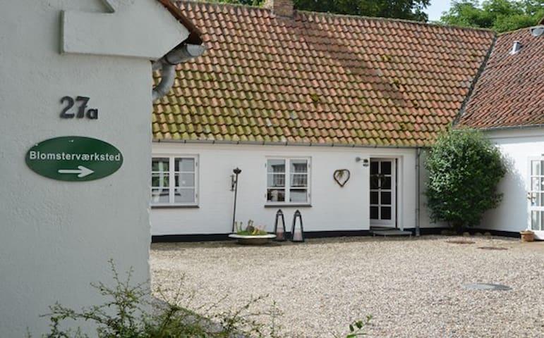 Romantisk gård i smukke omgivelser - Soro - House